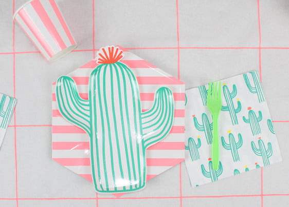 cactus fiesta theme party decorations coral green