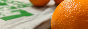 mostly healthy orange banner (home page)