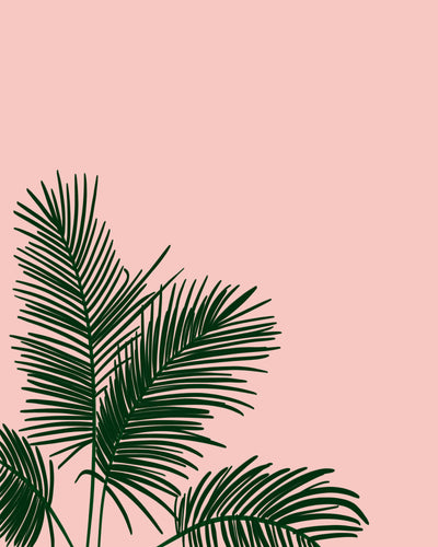 Fronds In Low Places - Pink