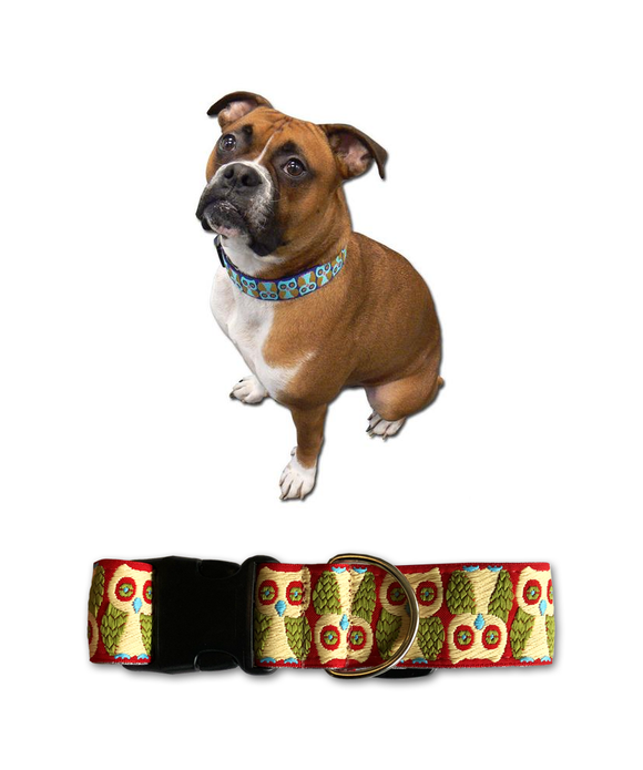 Tweedy Dog Collar - SM (10