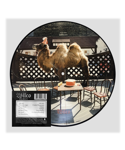Wilco (the album) Picture Disc