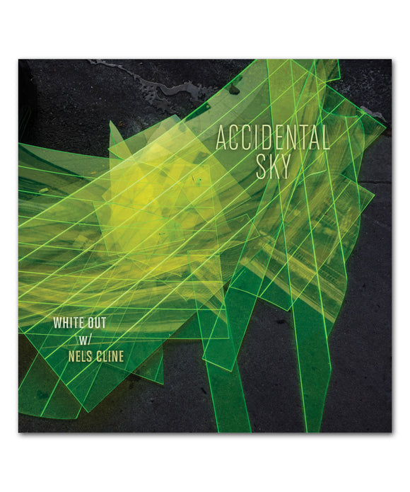 Accidental Sky Vinyl LP