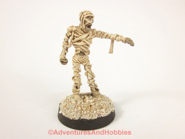 Fantasy Miniature Egyptian Mummy Undead 336 Painted Bones 25-28mm D&D