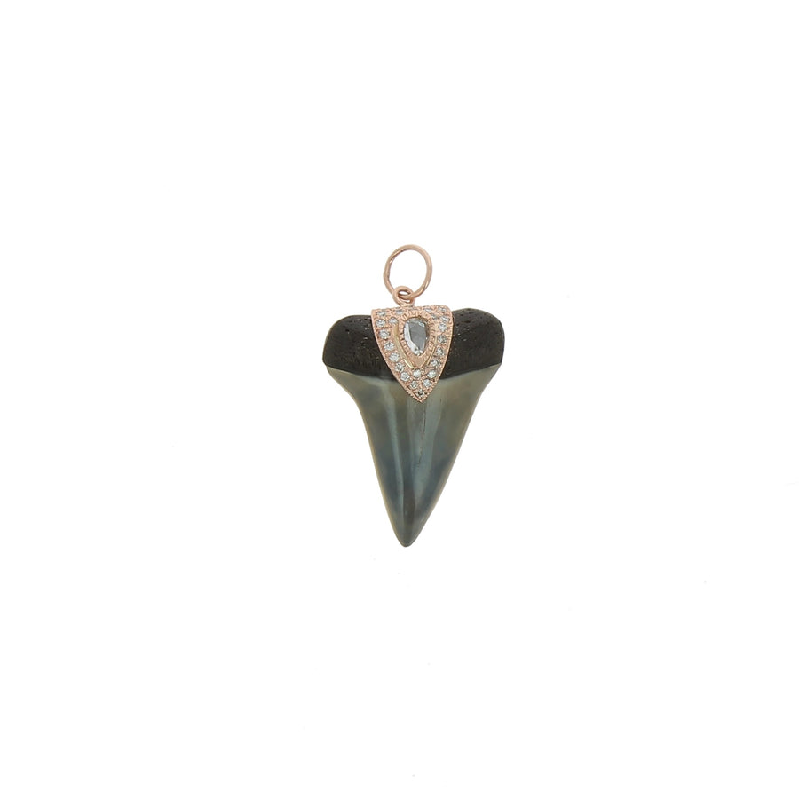 Charm Shark Tooth