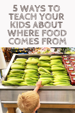 Teaching kids about food pin