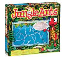 Load image into Gallery viewer, Jungle Ants
