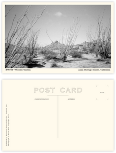 Black & White Postcard Subscription