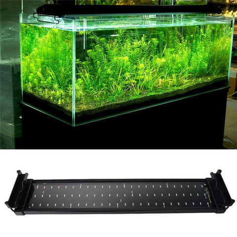 Fish Tank Aquarium LED Lighting 50CM-68CM Extendable Frame Lamp SMD 72 Leds 11W White + Blue 2 modes EU/US/UK Power Plug Adapter