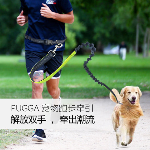 Nylon Running Leash For Pets Dog Lead Rope Elastic Waist Belt Strap Traction Rope Pets Leash Hiking Training Walk reflective pet