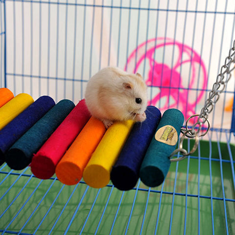 Natural Wooden hamster Chinchilla guinea pig hanging bed house Colorful Hamster Rat Ladder Bridge chew toy hamster accessories