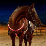 Horse Riding Equipment Multi-Color LED Horse Breastplate Collar Night Visible Horse Riding Accessories Equestrian Supplies