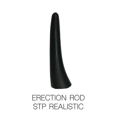 Erection Rod for STPs