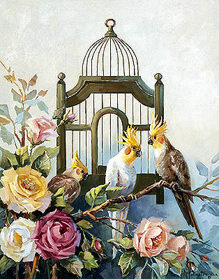 Cockatiel and Roses