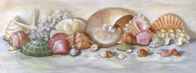 Sea Shells II