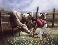 Feeding the Cows