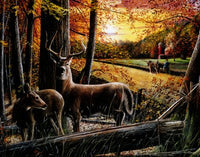 Autumn Deer I