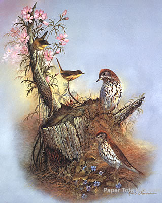 Woodland Songsters