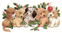 Holly Pups