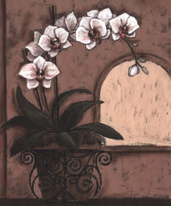 Orchid Window