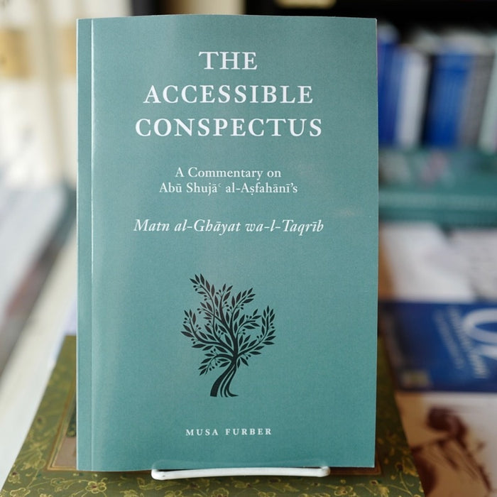 Accessible Conspectus