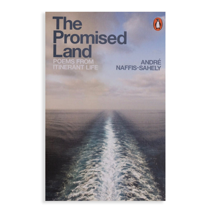 Promised Land: Poems from Itinerant Life