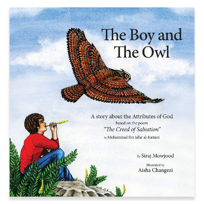 Boy and the Owl