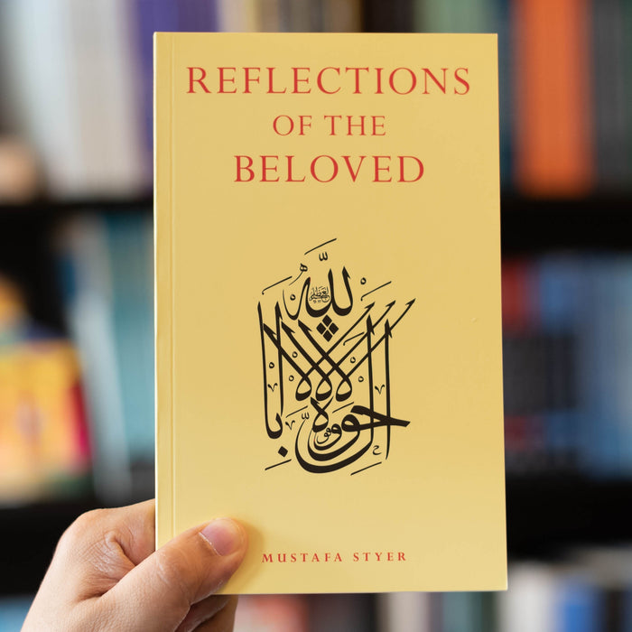 Reflections of the Beloved