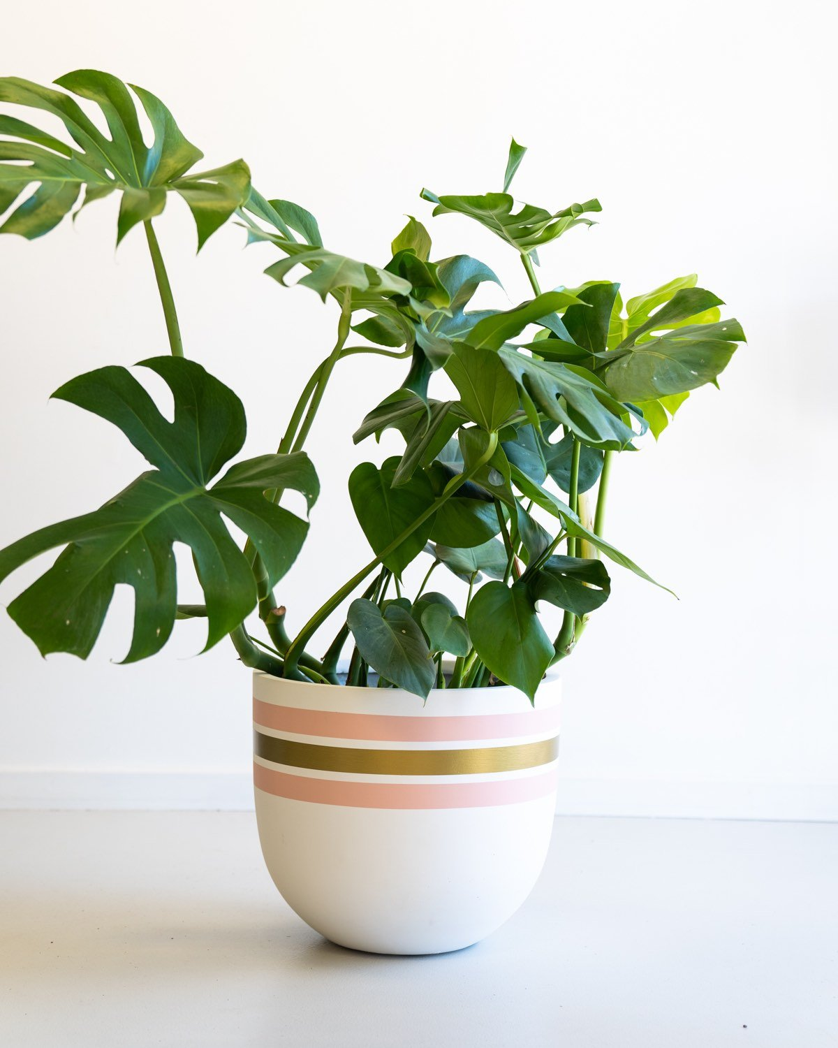 Toast & Honey Stripe Tease Planter - Medium