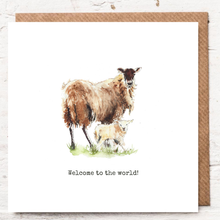 Load image into Gallery viewer, WELCOME TO THE WORLD - SHEEP
