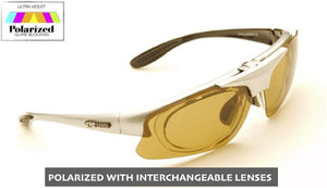 Challenger Silver Interchangeable SunGlasses