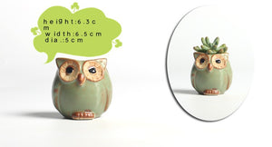 5pcs/set Owl-shaped Flower Pot