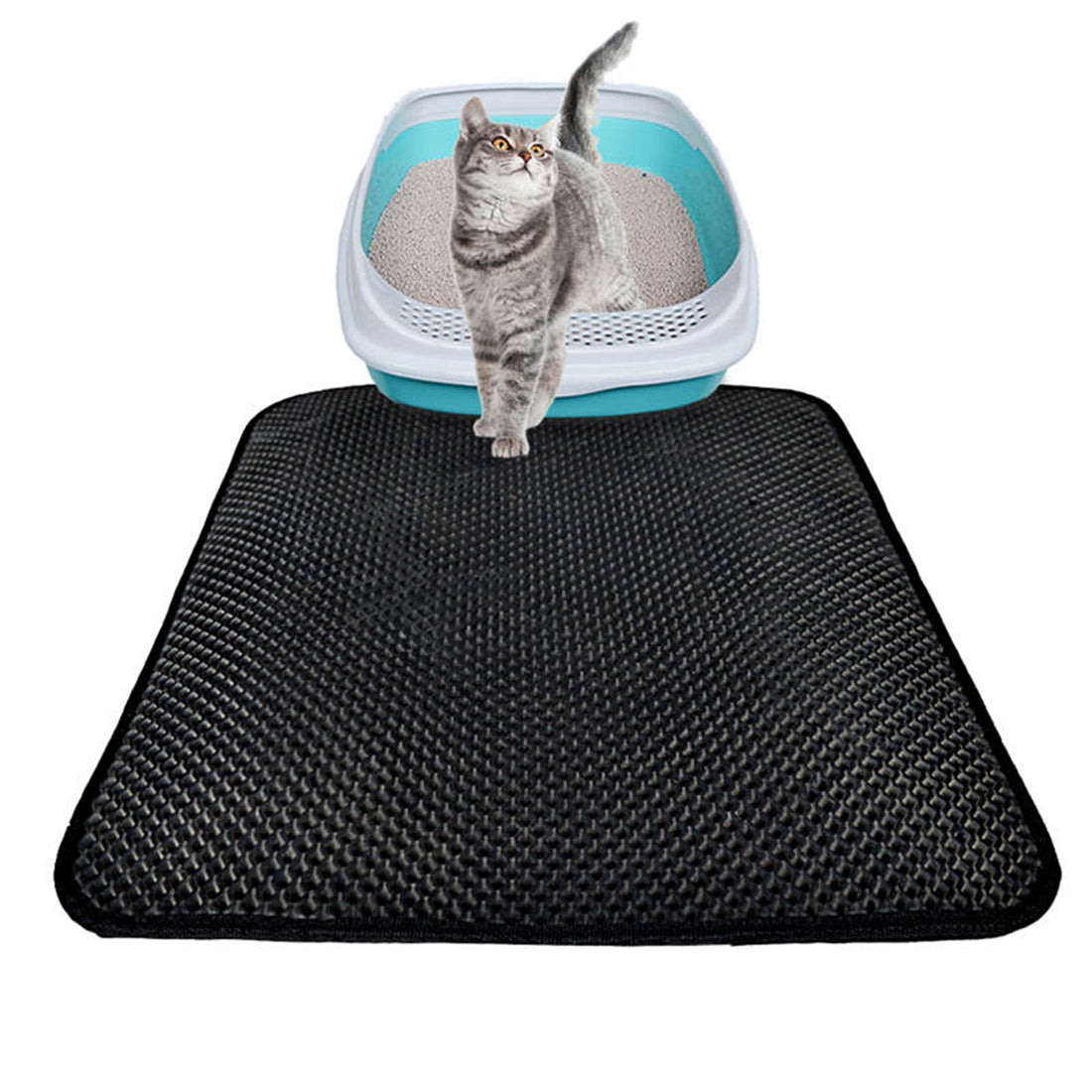 Black Cat Litter Mat
