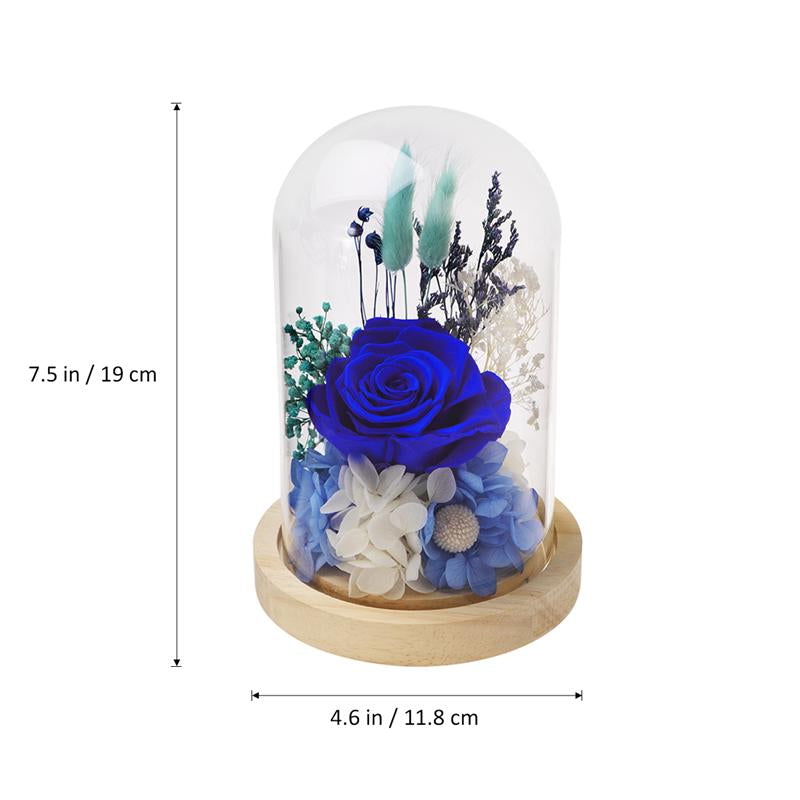 Rose In Glass Dome