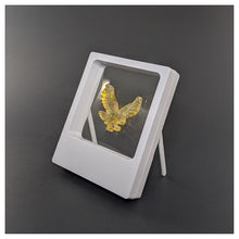 "Legs - 3.5"" x 4.3"" - 3D Floating Frame 2-Sided Display Case - White"