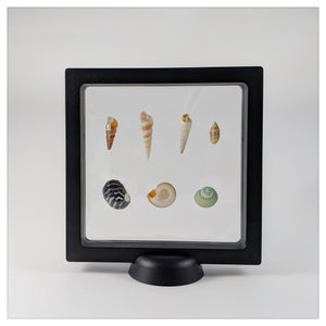 Square - 5.5 inch - 3D Floating Frame 2-Sided Display Case - Black
