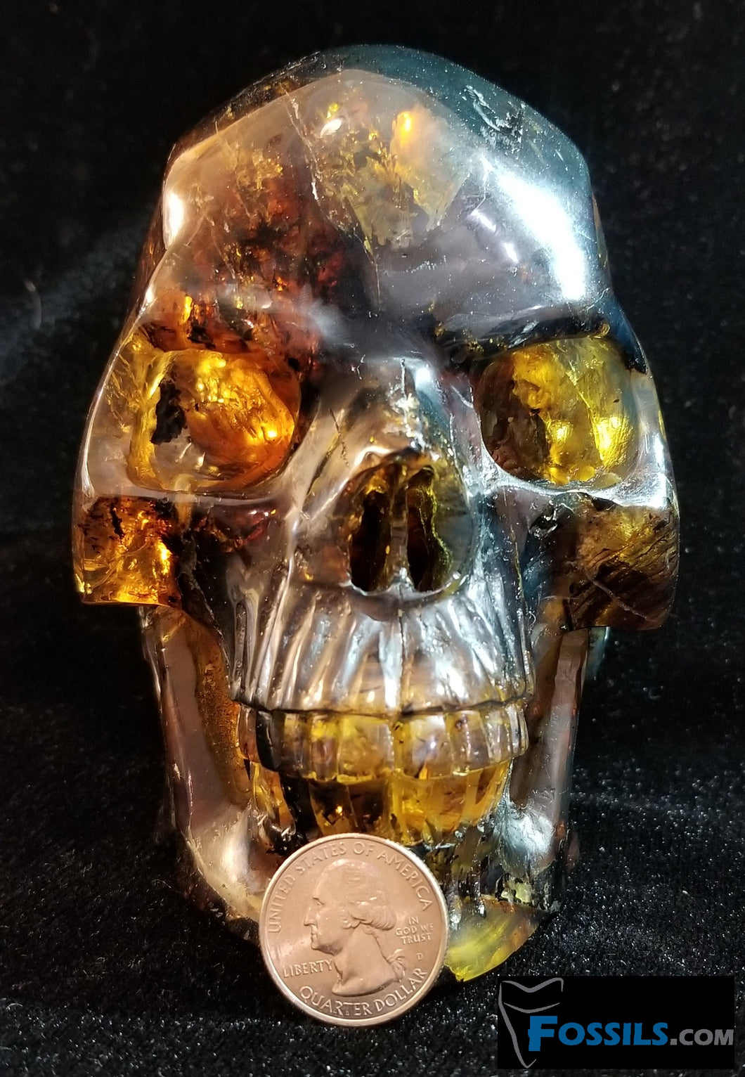 Skull Carving in Chiapas Amber (Mexico)