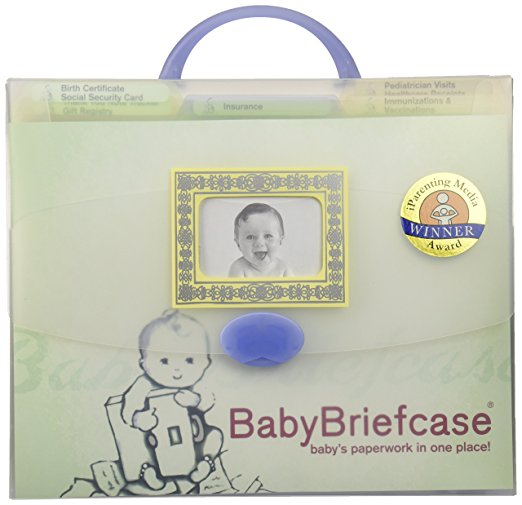 Baby Briefcase Baby Paperwork Organizer - Mint/Periwinkle