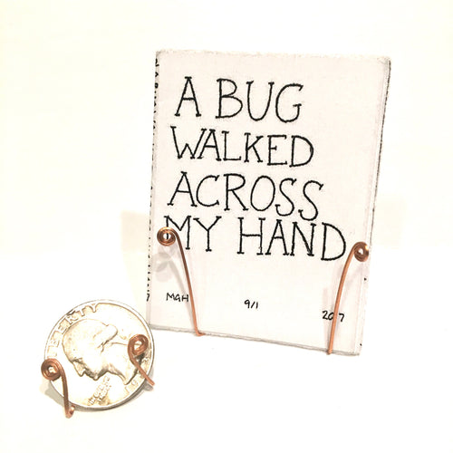 A Bug Walked Across My Hand