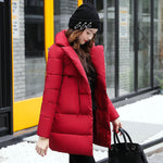 Down Cotton Padded Jacket