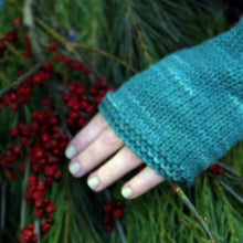 Fingerless Mittens Kit