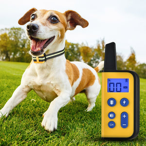 Remote Dog Training Collar