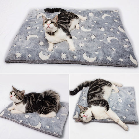 Luminous Bed Mat