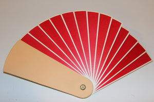 Small 4-Color Changing Fan