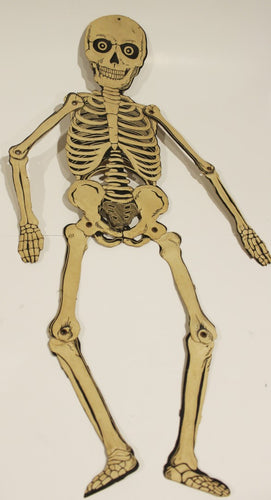 Vintage Halloween Skeleton  -  Germany