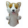 HeadCover Daphne Dog- Corgi