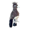 HeadCover Daphne Birds- Roadrunner