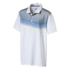 Polo Puma Road Map Polo Jr Junior