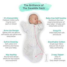 Amazing Baby Swaddle Sack with Arms Up Mitten Cuffs, Tiny Bear, Sterling, Medium, 3-6 Months