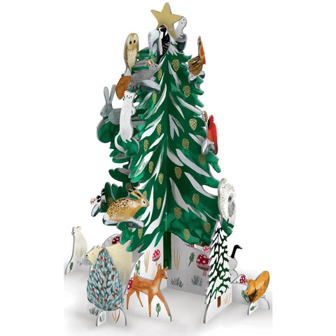 Christmas Conifer Pop & Slot Advent Calendar (5943224696998)