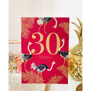 Sara Miller 30th Birthday Card (6138745618598)